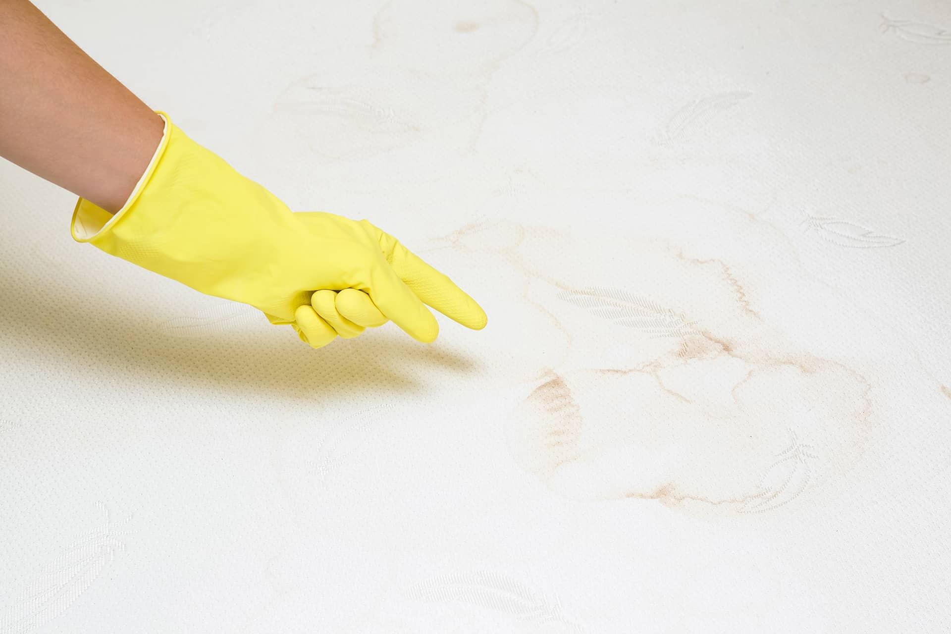 comment nettoyer urine sur un matelas